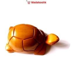 Boite tortue étoilée en...